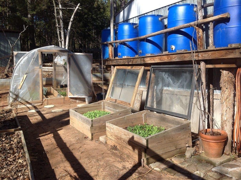 rainwater and greenhouse