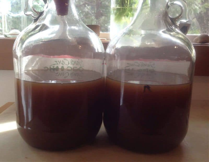 brewing hard cider