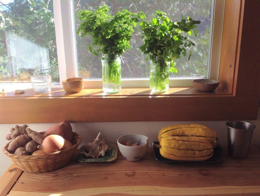 Parsley & cilantro