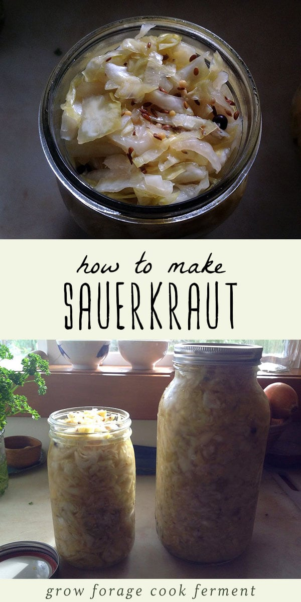 Homemade sauerkraut in a jar.