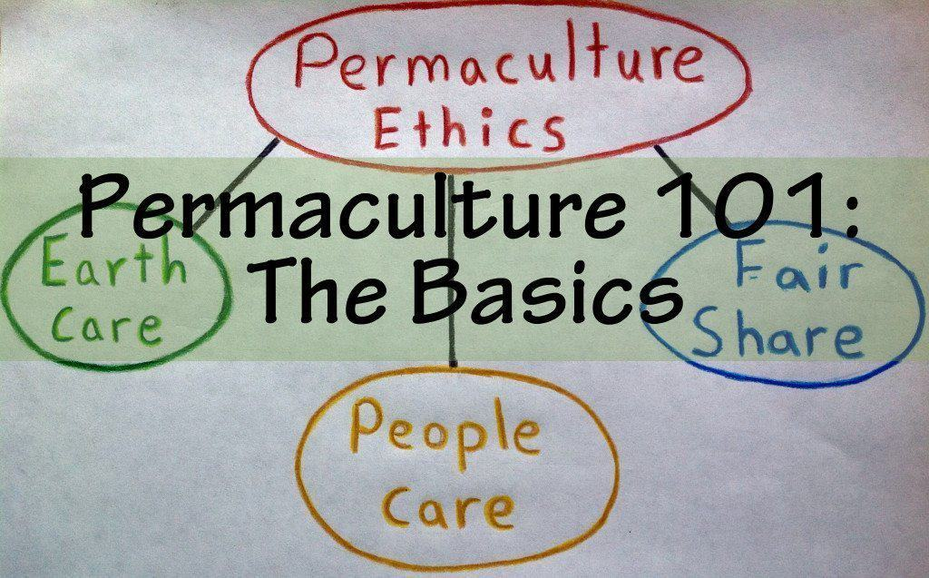 permaculture the basics