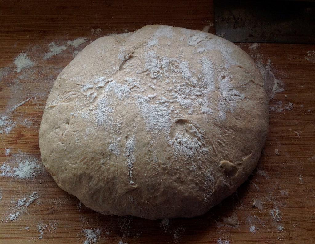 no knead sourdough has risen