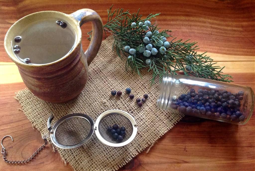 juniper tea