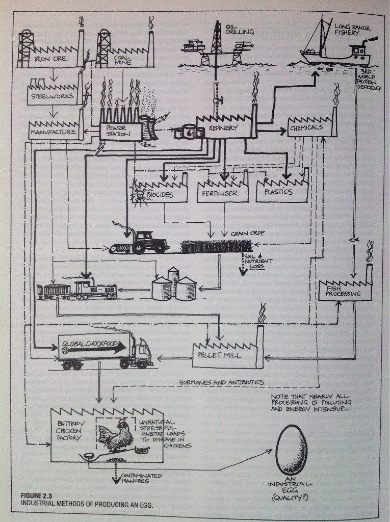 industrial egg, permaculture design manual