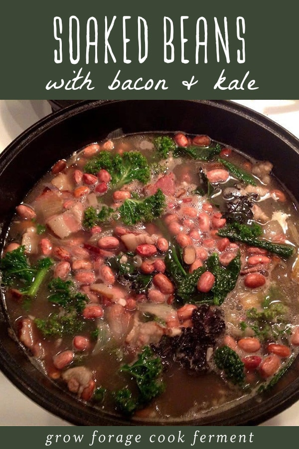 Beans cooked with bacon and kale in a cast iron dutch oven.