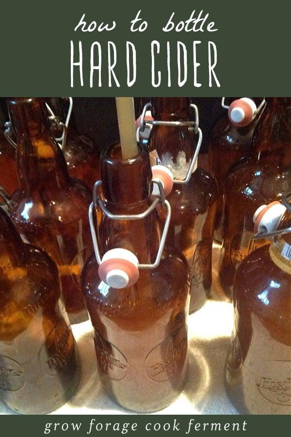 Bottles of homemade hard cider.