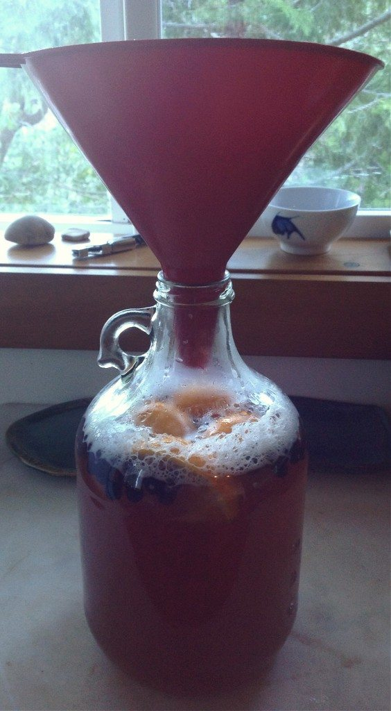 using a funnel to add water to the gallon of mead