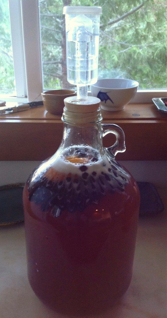 add the airlock to the homemade mead