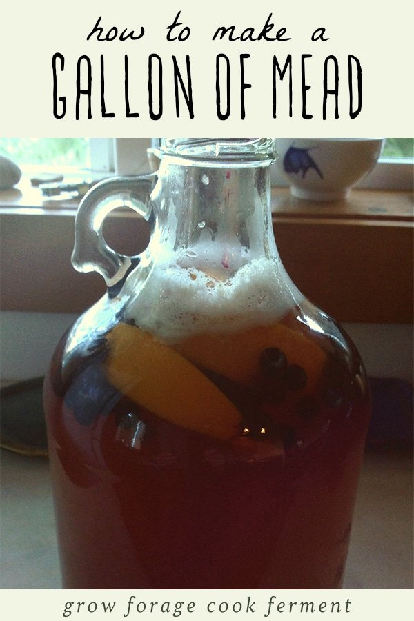 A gallon of homemade mead.