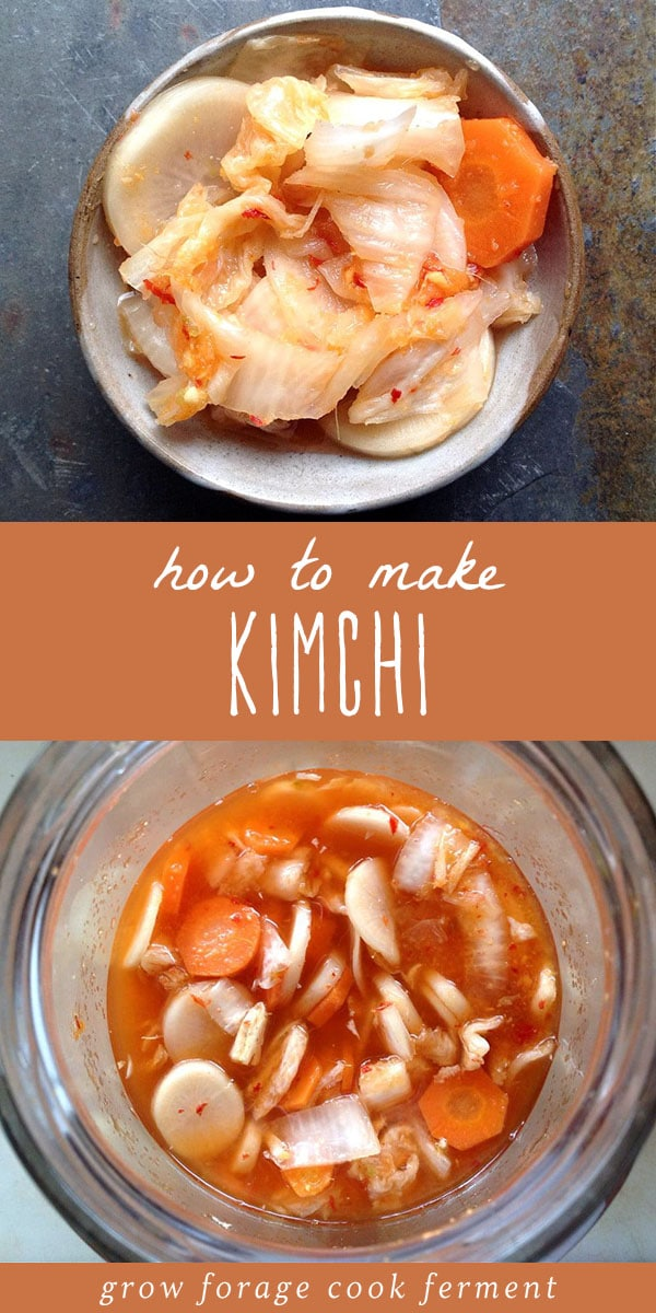 Kimchi is a delicious traditionally fermented food. Here I show you my method and recipe for how to make Kimchi, a spicy, naturally fermented, Korean condiment. #fermented #realfood