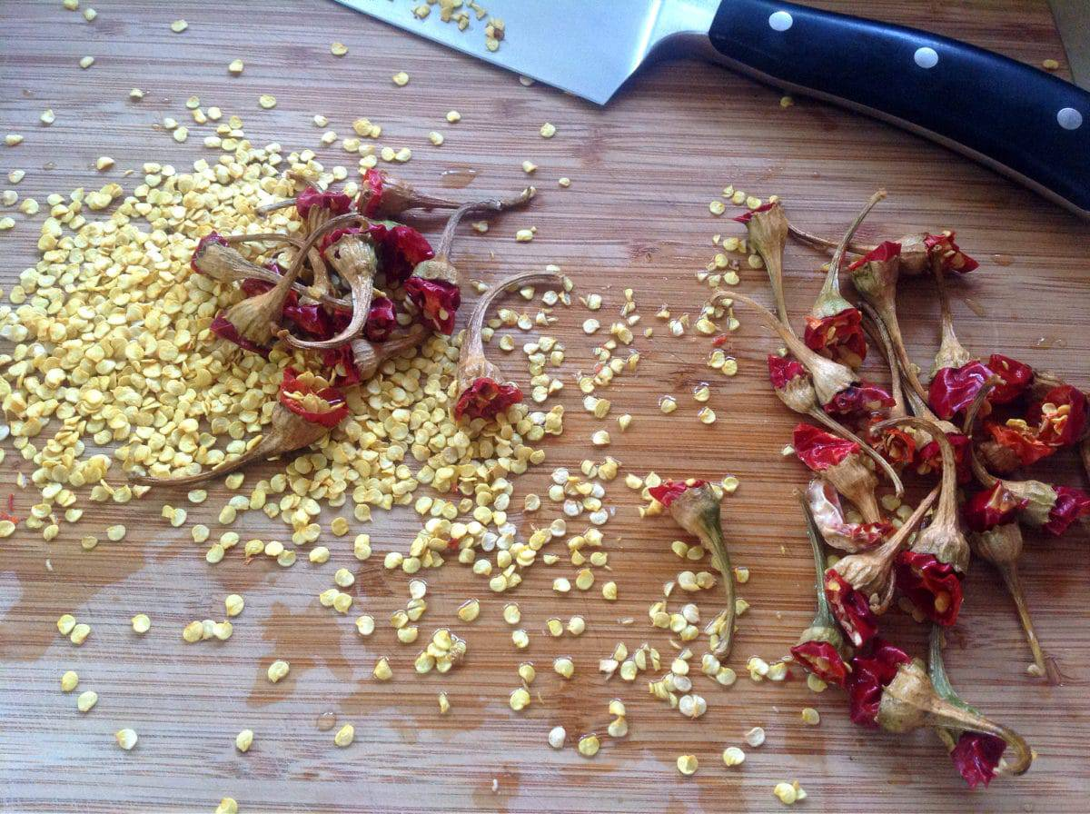hot pepper seeds and stems on a cutting board