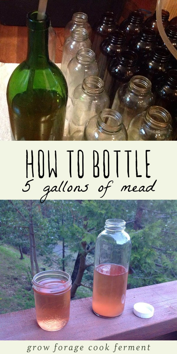 After you've fermented a batch of mead, the next step is bottling it for storage. Here is how to bottle mead! #mead #homebrew