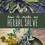 Dried herbs on a drying rack, and a tin of homemade herbal salve.