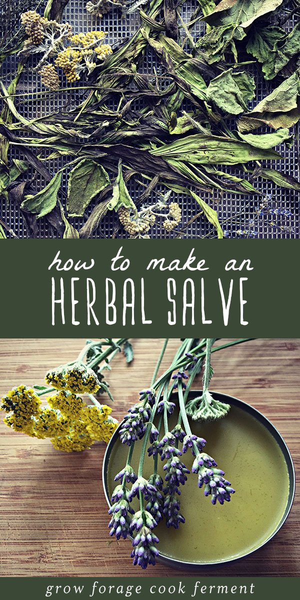 Making your own all natural herbal salve is so easy! This salve is the perfect beginner herbal medicine recipe for a budding herbalist. It treats minor cuts, scrapes, bruises, bites, stings, rashes and dry skin.It has astounding healing powers with all of the medicinal herbs it contains, and smells divine! Click through to learn how to make an herbal salve using healing herbs you can find in your own backyard or grow in your garden. #herbalism #herbalmedicine #salve #medicinal #allnatural
