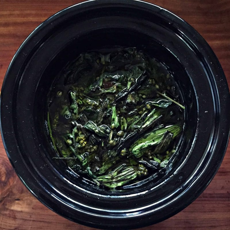 herbs and oil in a mini slow cooker