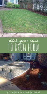 Before and after photos showing how to transform a lawn into a permaculture yard.
