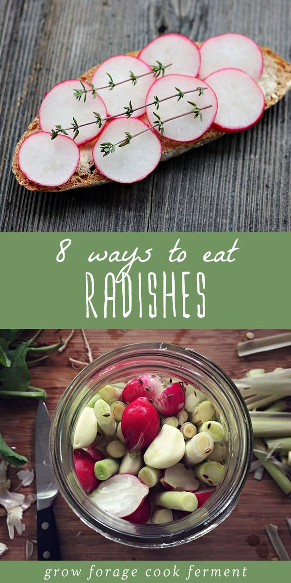 Radishes are an awesome fall and spring vegetable that can be eaten in so many ways. From raw, to roasted, to pickled, there are so many ways to enjoy fresh radishes. Here are 8 ways and tons of recipes to eat radishes and radish greens! #radishes #realfood