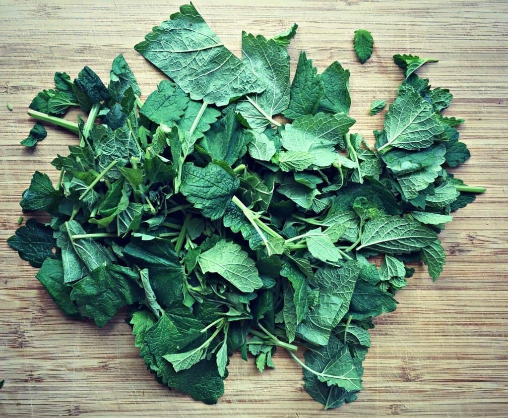 chopped lemon balm