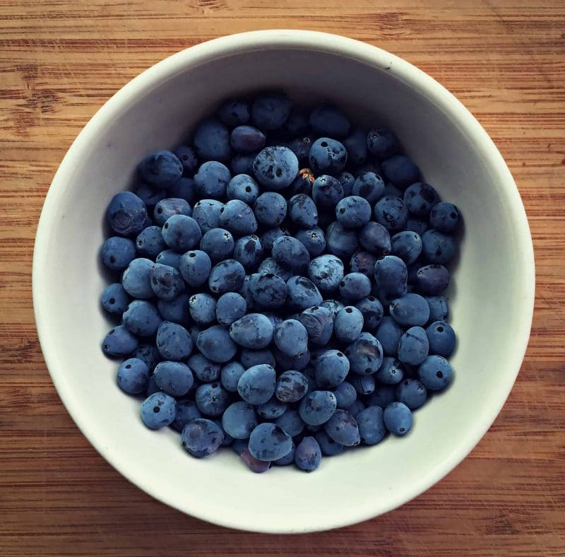 oregon grape berries bowl