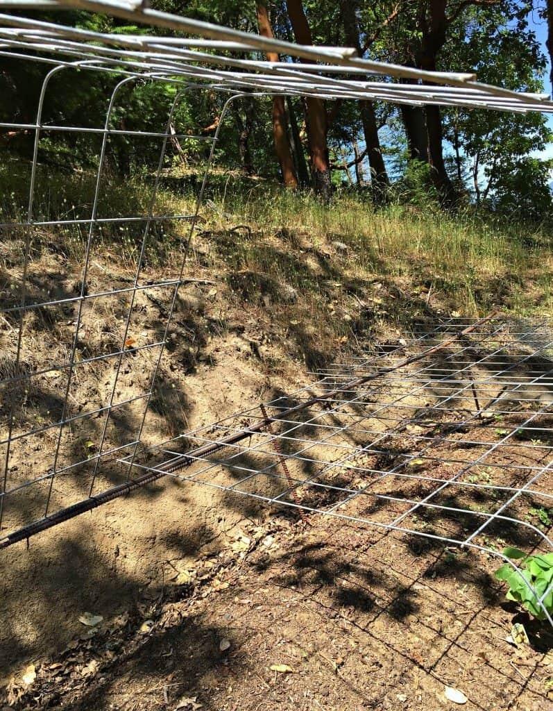 deer cage