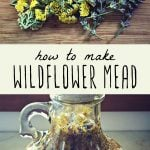 Wildflowers on a cutting board, and a gallon jug of homebrewed wildflower mead.
