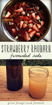 Strawberries and rhubarb in a sauce pot, and a glass of fermented strawberry rhubarb soda on a wood table.