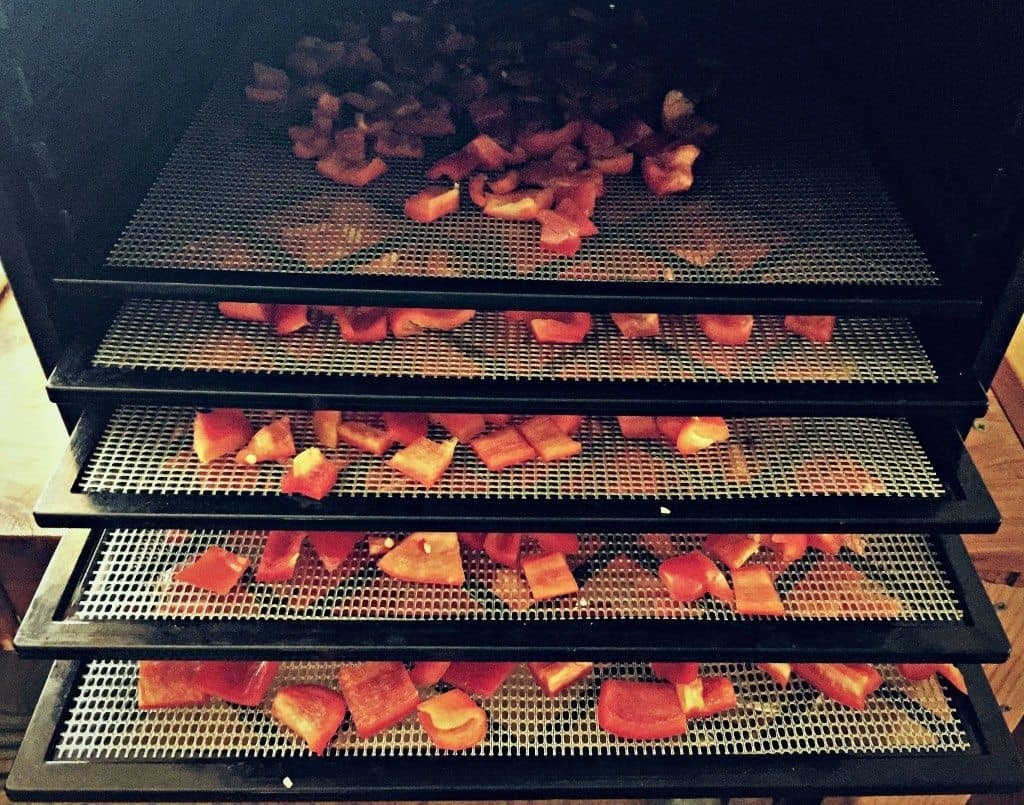fill up dehydrator