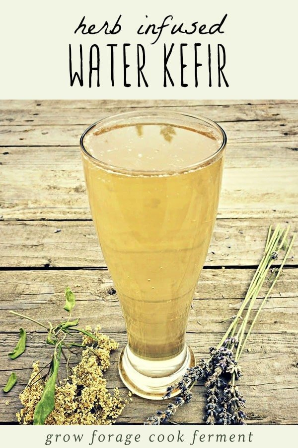 A glass of herbal kefir water on a wood table with fresh herbs.