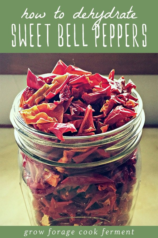A glass jar of dehydrated bell peppers for food storage.