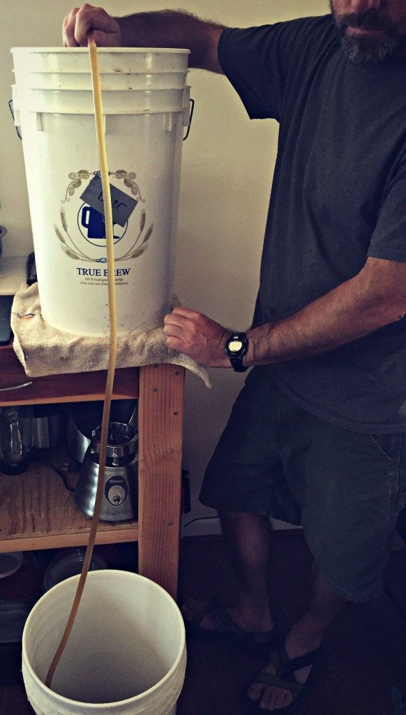 siphon beer into bottling bucket