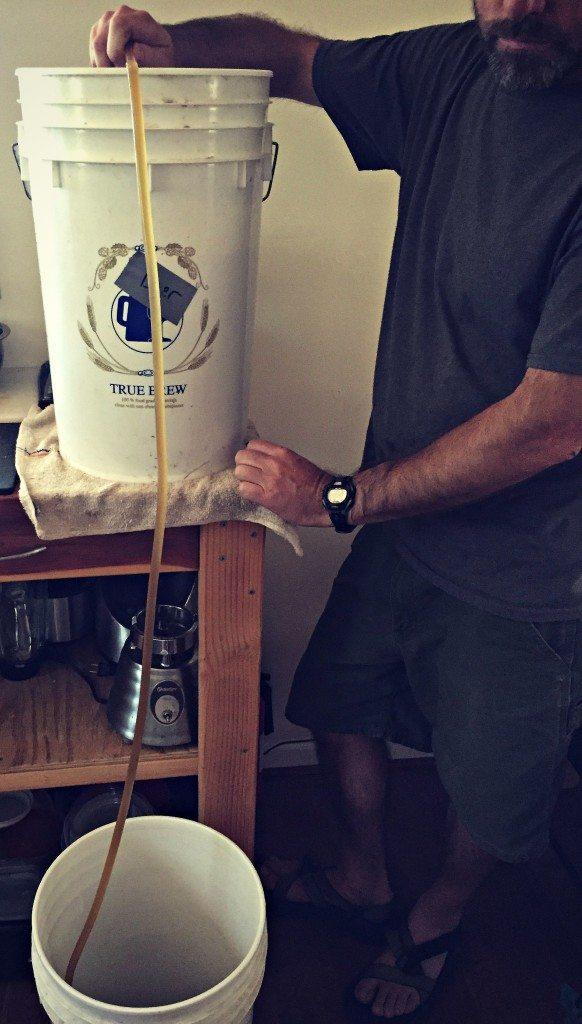 siphon beer into bottling bucket