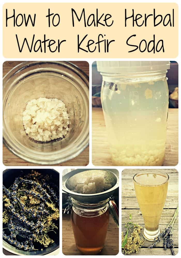 water kefir soda collage