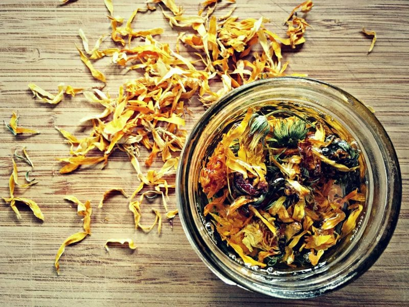 a jar of calendula infused oil