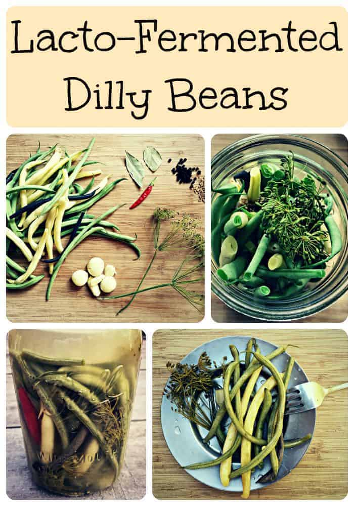 dilly beans collage