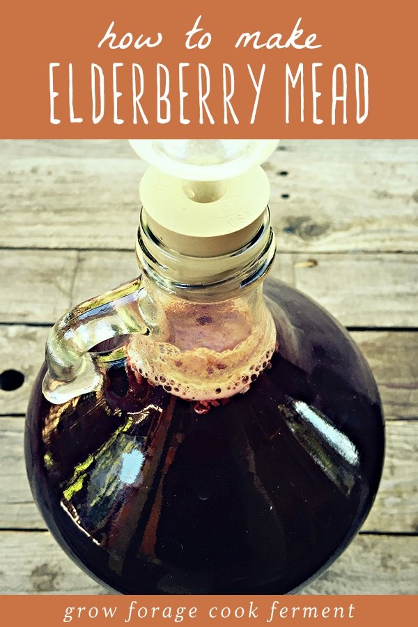 A glass gallon jug of elderberry mead.