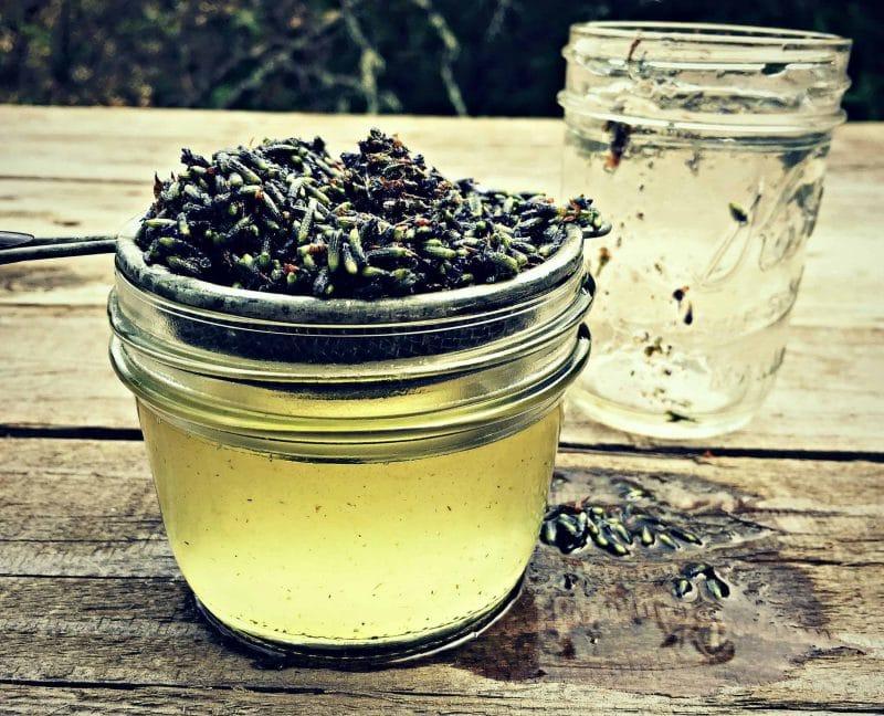straining lavender oil