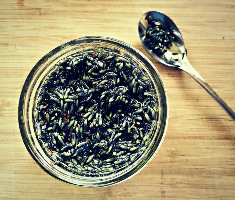 making lavender infused oil