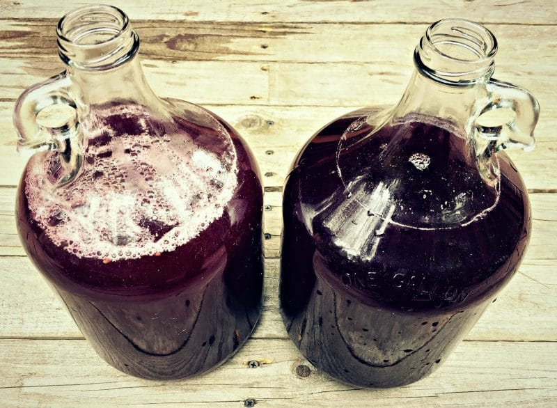 two gallons of racked elderberry mead