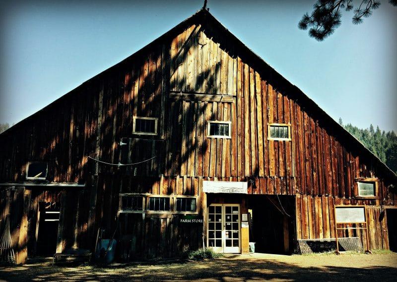 willow witt barn