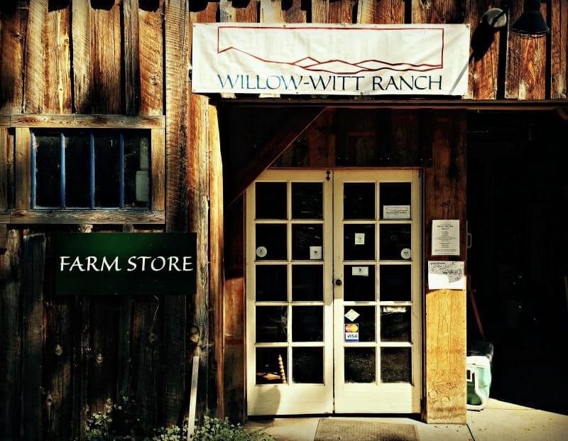 willow witt farm store