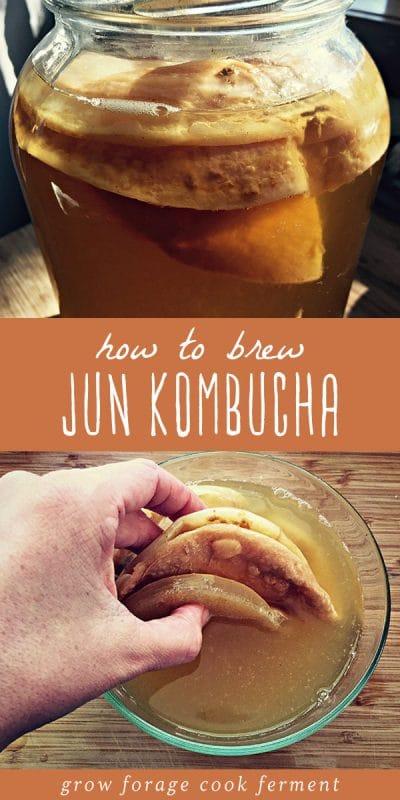 Jun kombucha brewing in a large glass jar, and a close-up view of a kombucha scoby.