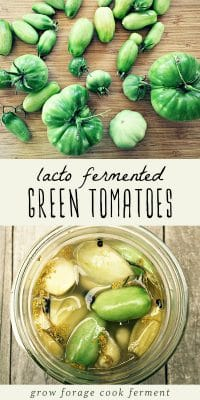 Fresh green tomatoes on a cutting board and a jar of lacto fermented green tomatoes.