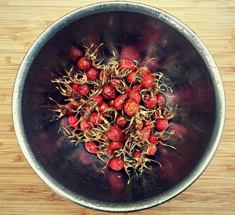 bowl of foraged rose hips