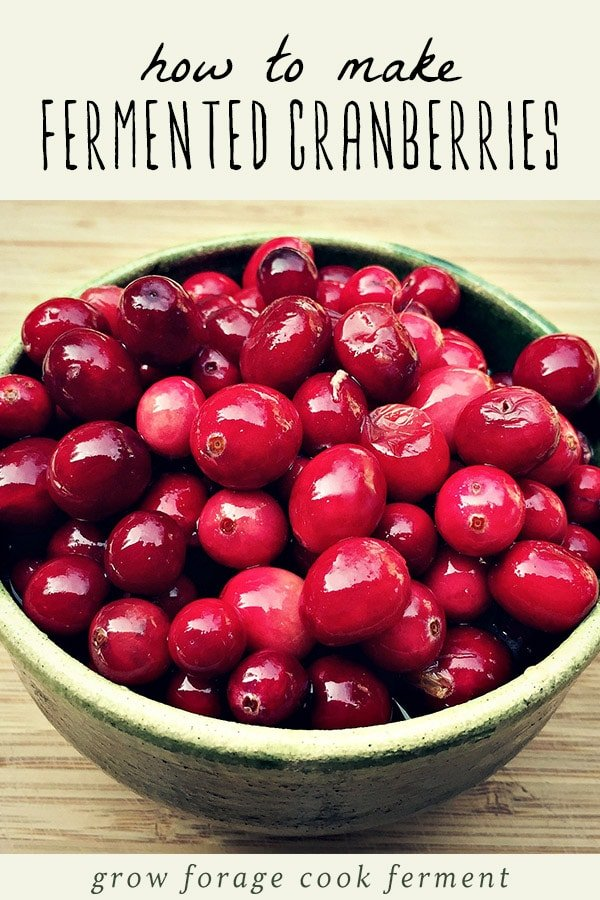 A bowl of fermented cranberries.