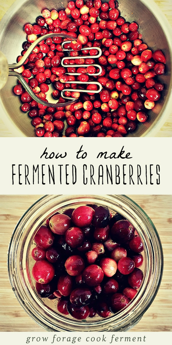 You won't want to miss this gut healing, probiotic filled fermented cranberries this holiday season. Made with fresh cranberries, orange, ginger, honey, cinnamon and cloves, this fermented cranberries is an easy and delicious fruit ferment. These cranberries are a wonderful side dish for Thanksgiving dinner - the perfect real food alternative to canned cranberry sauce! #ferment #fermented #cranberries #sidedish #thanksgiving #fall #realfood #traditionalfoods #fallrecipes