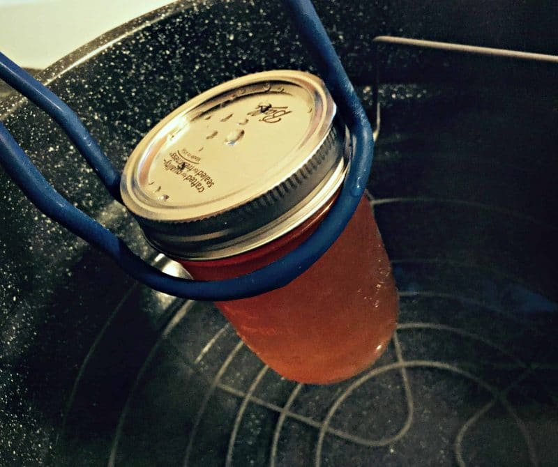 put hard cider jelly jars in canner
