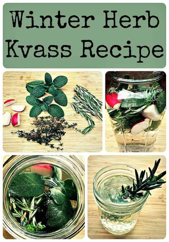 Winter Herb Kvass Recipe