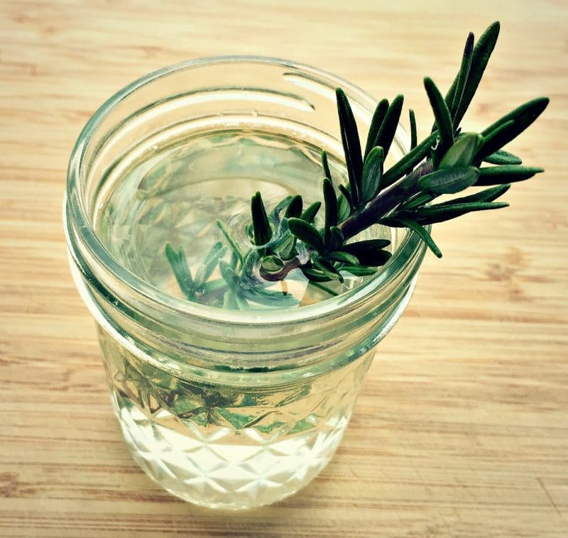 herb kvass in a glass with a sprig of rosemary for garnish