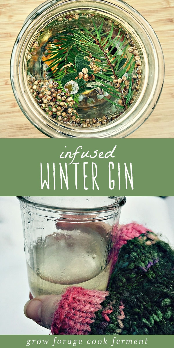 Have you ever made your own gin? It's so much fun, and so easy! This winter gin is infused with fresh foraged juniper berries, white fir, and lots of winter herbs and spices. It's refreshing and aromatic, and a perfect winter foraging recipe. This homemade infused winter gin is the perfect recipe for the holidays to indulge in yourself, or give as a gift. #gin #foraged #infusion #alcohol #cocktail #homemade