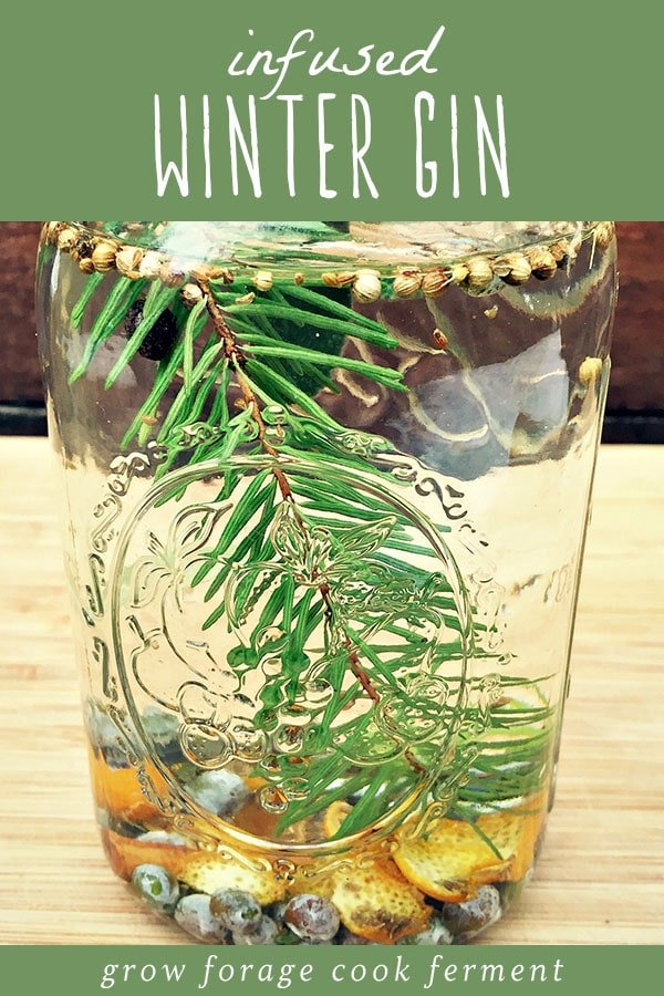 A jar of homemade gin infused with winter herbs.